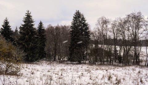 FOTKA - Pořád mírně sněží