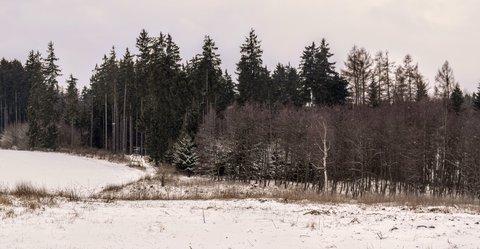 FOTKA - Ještě pořád je to málo sněhu
