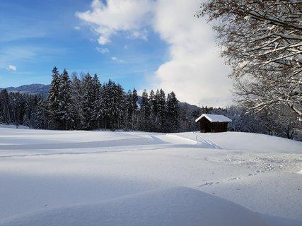 FOTKA - Ritzensee - Stodola na sněhové louce