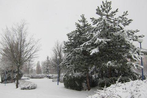 FOTKA - Ranní sněhová nadílka v Praze - i park je hezčí