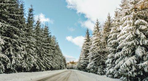 FOTKA - zasněžená příroda, jak to má v únoru vypadat