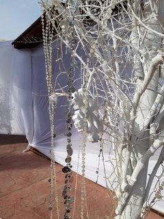 FOTKA - vločka a strom