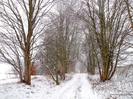 FOTKA - zima pomalu končí, přitom je tak romantická