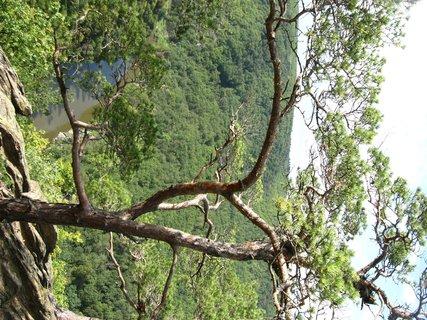 FOTKA - Sealsfieldův kámen - Podyjí