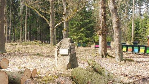 FOTKA - psí hřbitov - na kameni jsou jmenovky s loveckými psy