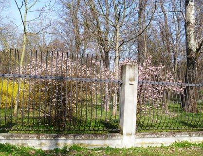 FOTKA - plot Podzám. zahrady v Kroměříži