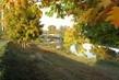 dubový závěs