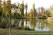 rybník v sadech