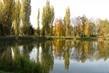 rybník a topoly