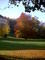 podzim a kousek zamku
