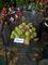 zahradkarska vystava,zelene jabka