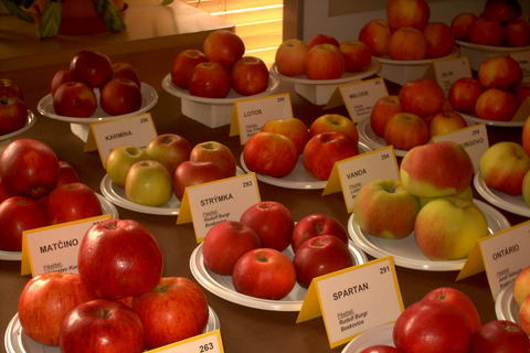 FOTKA - zahradkarska vystava,to je jablek