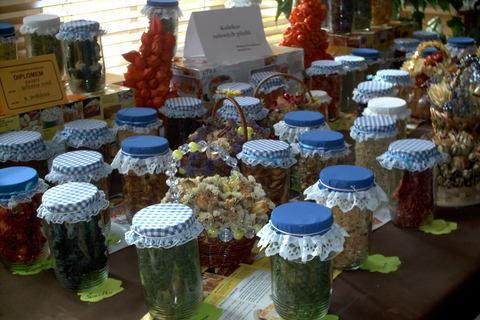 FOTKA - zahradkarska vystava,susene ovoce