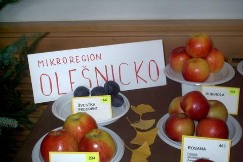 FOTKA - zahradkarska vystava,jabloska