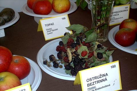 FOTKA - zahradkarska vystava,ostruziny
