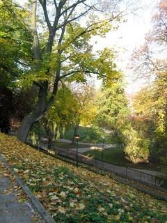 FOTKA - Pohled na park z hradeb
