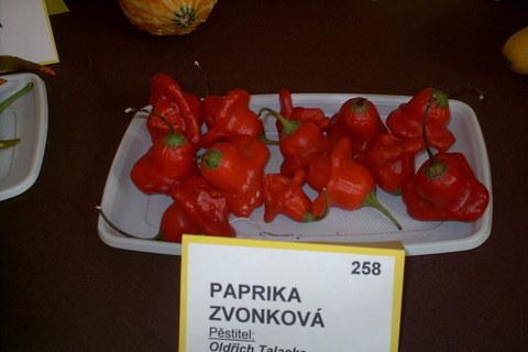 FOTKA - zahradkarska vystava,papricky zvonkovy