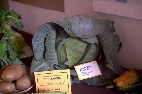 FOTKA - zahradkarska vystava,zeli