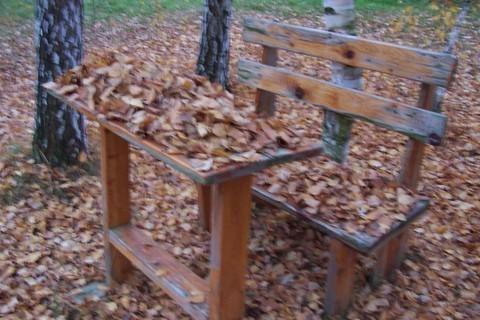 FOTKA - Podzimní zítiší