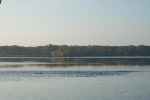 FOTKA - Hladina Munického rybníka