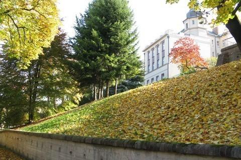 FOTKA - podzimní listí na hradbách