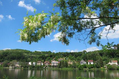 FOTKA - Jarní procházka u rybníka