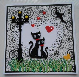 FOTKA - kočičky a lucerna