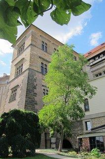 FOTKA - Léto v zahradách  Pražského hradu