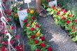 Vhodné na hřbitov