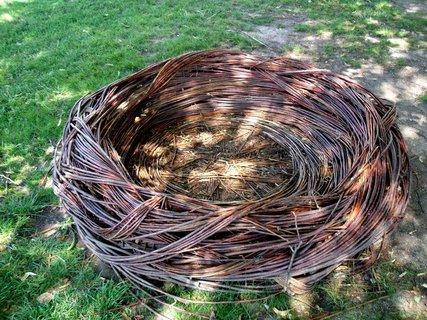 FOTKA - obří hnízdo v zámeckém parku