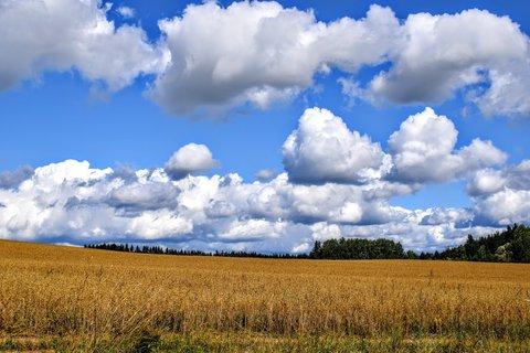 FOTKA - mraky nad polem včera
