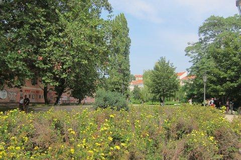 FOTKA - Park Cihelná - květů tu moc není