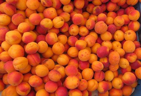 FOTKA - Barvy na trhu: oranžové meruňky