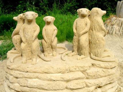 FOTKA - sochy z písku - téma Afrika - surikaty
