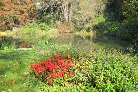 FOTKA - Botanickou zahradou v Praze 10