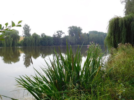 FOTKA - Vodní nádrž Žabinec na stejnojmenném potoce (30.7.)