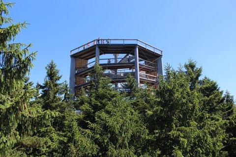 FOTKA - Stezka korunami stromů