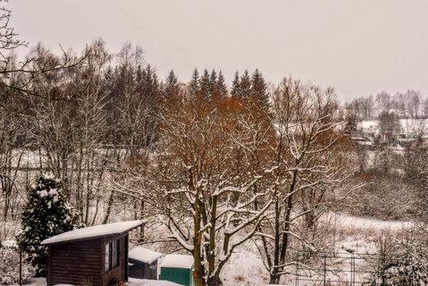 FOTKA - Iv zimě je koruna barevná