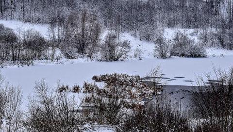FOTKA - Zimní laguna