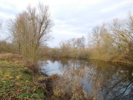 FOTKA - Poslední rybaření tohoto roku (31.12.)