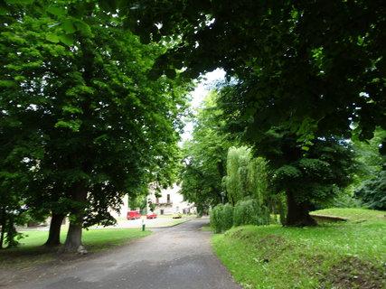 FOTKA - cesta zámeckým parkem Stránov