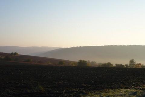 FOTKA - Mlhavé ráno