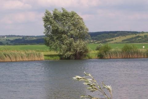 FOTKA - Pohled přes vodu 1
