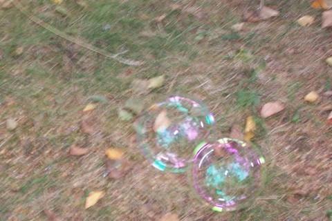 FOTKA - Bubliny 11