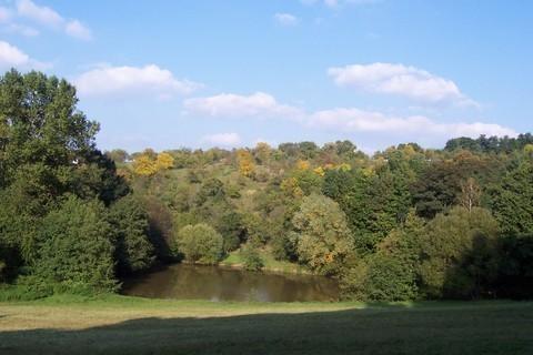 FOTKA - Podzimní krajina I