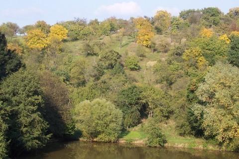 FOTKA - Podzimní krajina II
