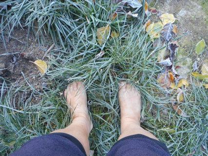 FOTKA - chůze v trávě