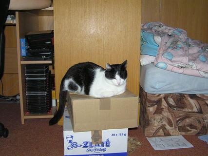 FOTKA - Na krabici 1