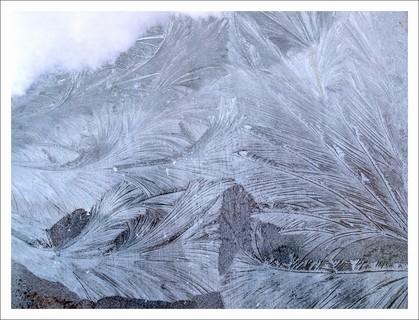 FOTKA - ledové květy na skleníku