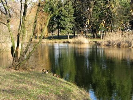 FOTKA - opuštěný park v prosinci